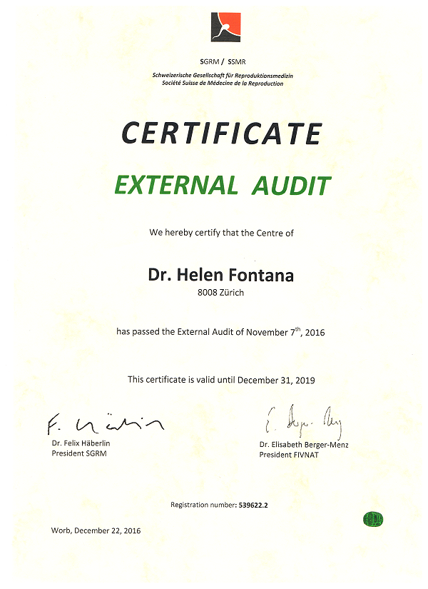 External Audit